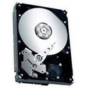 40GB IDE ATA100 5400RPM 3.5in x 1in 40p 100MB/s H