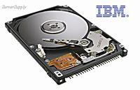 IBM          DJSA-220