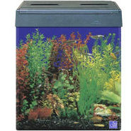 SeaClear Tall Eclipse I Compatible 18 Gallon Aquar