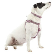 Top Paw Nylon Adjustable Dog Harness