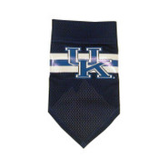 Kentucky Wildcats Official Dog Collar Bandana