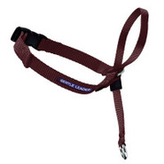 Premier Gentle Leader Dog Training Collar