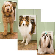 Plastic Door Mount Pet Door