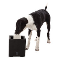 Dogit Design Al Fresco Drinking Fountain for Dogs