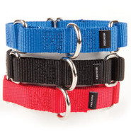 Premier Pet Products Premier Martingale Dog Collar