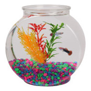 Top Fin 1/2 Gallon Plastic Fish Bowl