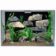 SeaClear 20 Gallon Aquarium