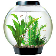 Baby biOrb 4 Gallon Black Aquarium Starter Kit