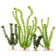 Cabomba and Ambulia Artificial Plants