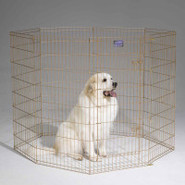 Midwest Gold Zinc 30   Exercise Pen