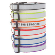 Coastal Pet Products Personalized Reflective Plain