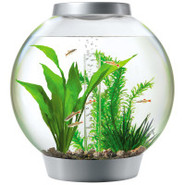 Baby biOrb 4 Gallon Silver Aquarium Starter Kit