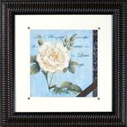Vintage Rose II Print Under Glass 21  Square Wall