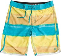 Element Au Naturale Eco Flex Boardshort Green