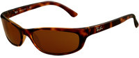 Ray-Ban Icons Tortoise Unisex Sunglasses - RB4115