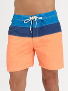 Colorblocked Swim Trunks