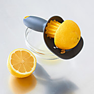 Catcher Citrus Seed Reamer and Pulp Catcher