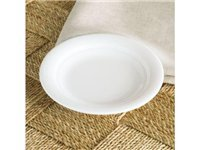 5.75-in. Aspen Ridge Party Plate