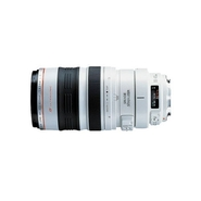 Canon EF 100-400mm f/4.5-5.6L IS USM Telephoto Zoo