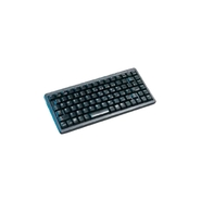 G84-4100 83-key PS 2 Keyboard (G84-4100PRAUS)