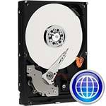 Open Box Western Digital 250GB Caviar Blue PATA In